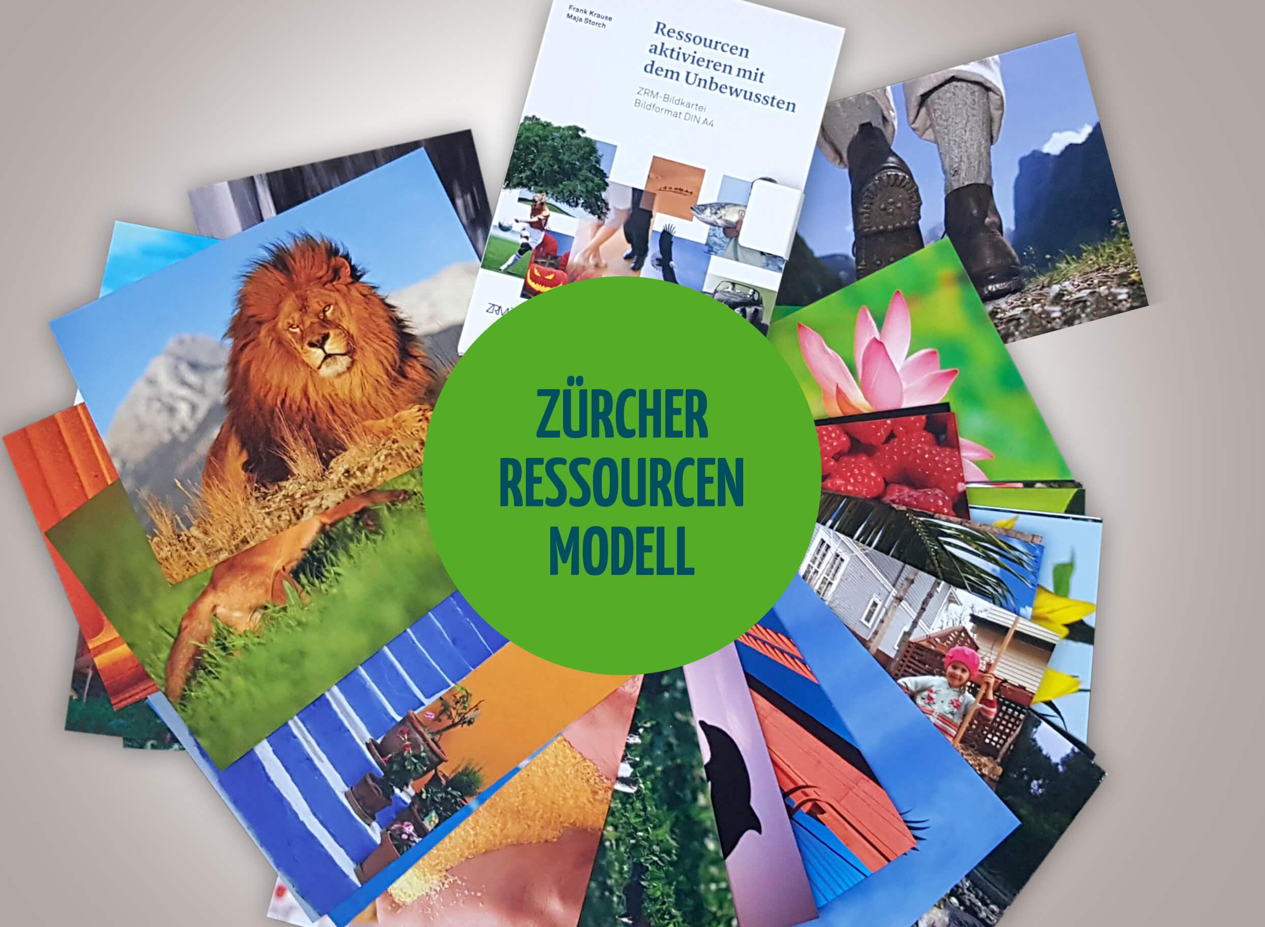 zauber-der-bilder-oder-das-Zuericher-ressourcen-modell