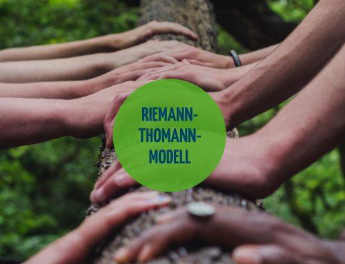 Das Riemann-Thomann-Modell